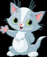 WAPT cat