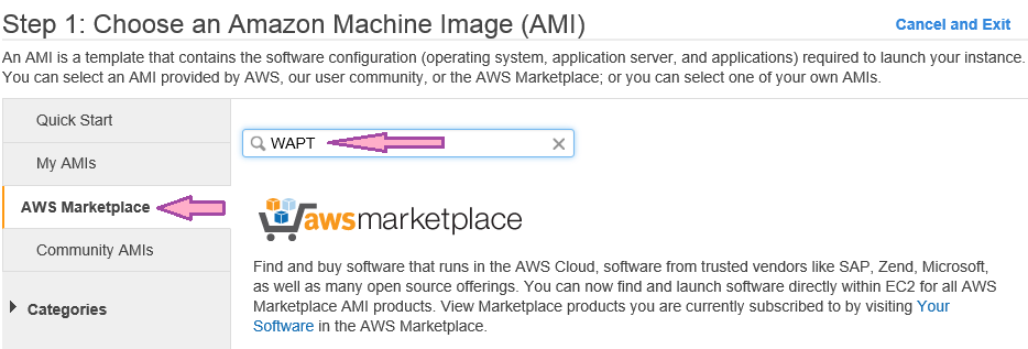 Choose an Amazone Machine Image